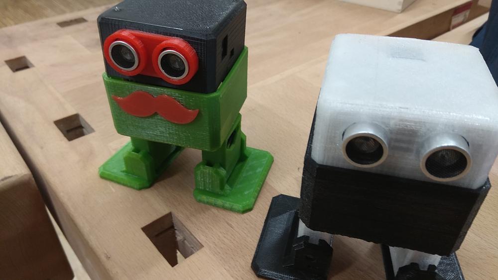 Otto-Roboeter